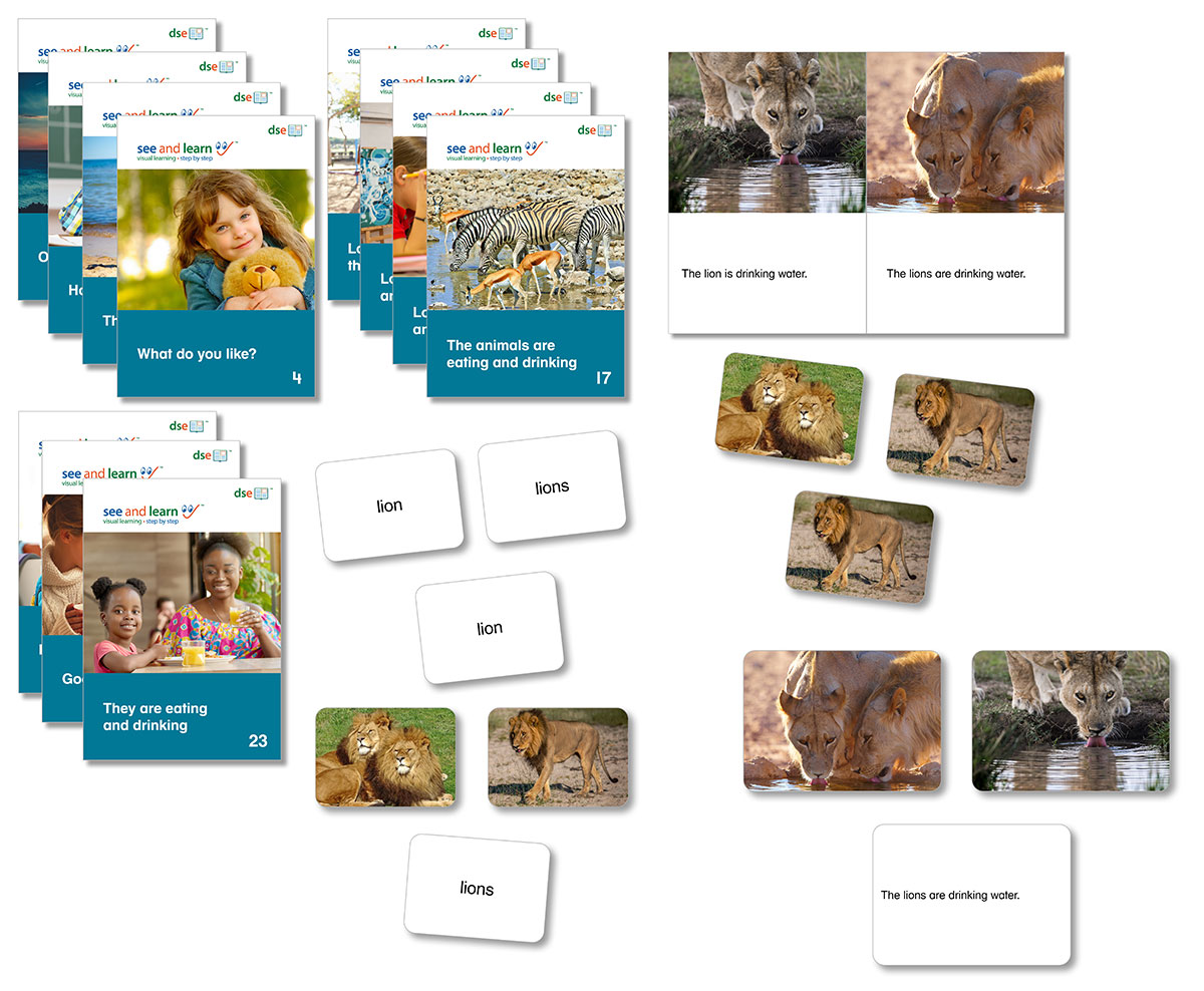 An image of book covers, picture cards, word cards and sentences cards from See and Learn Sentences 1