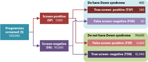 Down syndrome screening process - possible outcomes and measures of accuracy