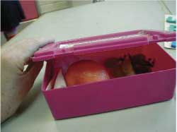 Photo of Ynez's lunchbox